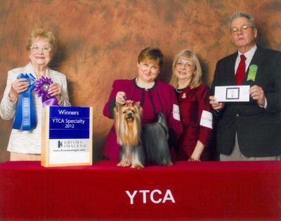 bix-winners-dog